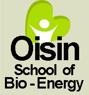 oisin-school-bio-energy
